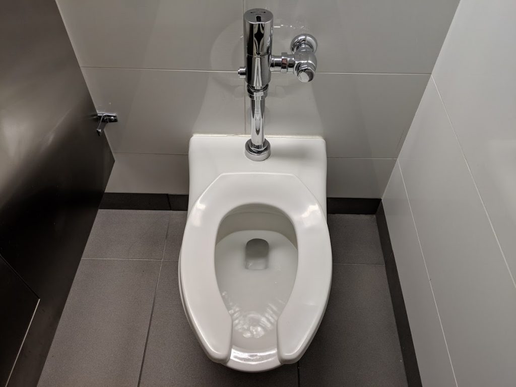 American toilet bowl and seat