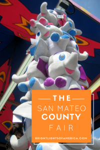 San Mateo | County Fair | San Mateo County Fair | American Fairs | US Fairs | Best US Fairs | Things to eat at US Fairs | living in America | Aussie | Expat | Aussie Expat in US | Fair rides