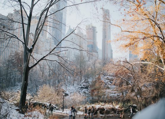 New York City in Winter: Things to see and do