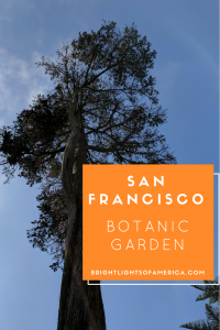 San Francisco | Botanic Gardens | Botanical Gardens | Flowers | plants | trees | gardens around the world | Aussie | Expat | Aussie Expat in US | expat life