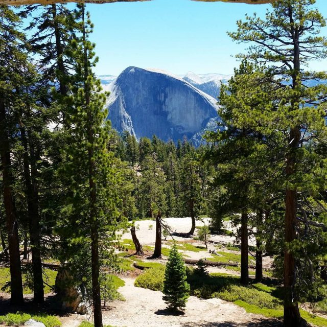 We managed to book camp sites for Yosemite this morning!hellip