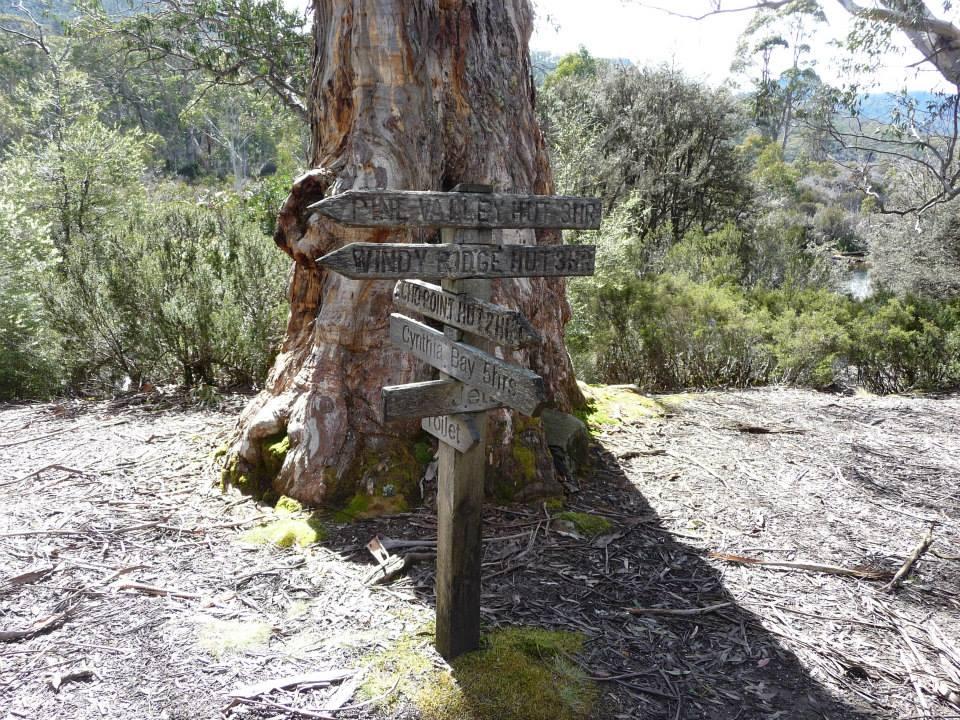 Traipsing Tasmania's Overland Track (Part 2)