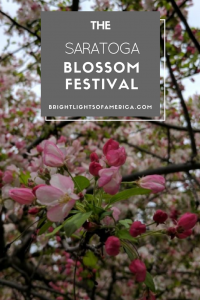Aussie | Expat | Aussie Expat in US | expat life | Saratoga | spring flowers | blossoms | Saratoga blossom festival | US fairs