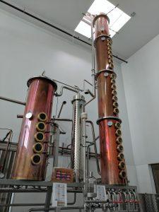 Indigeny Reserve distillery, Sonora