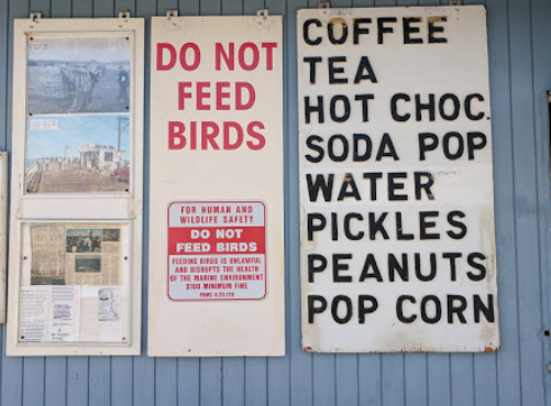 californian-road-trips-pismo-beach-snack-hut