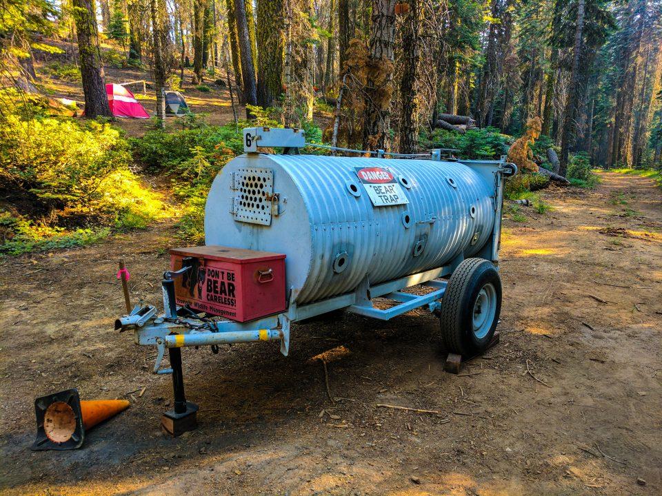Two days in Yosemite bear trap