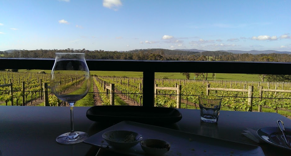 Winery Tasmania Road Trip