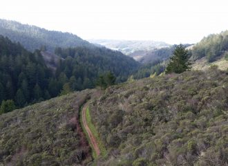 Great hikes in San Francisco