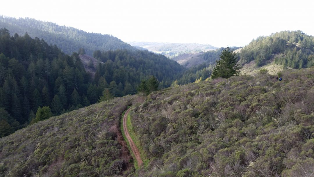 5 Great San Francisco hikes
