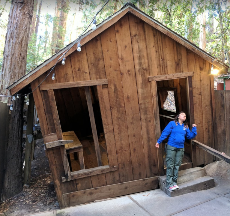 The leaning cabin at The Mystery Spot