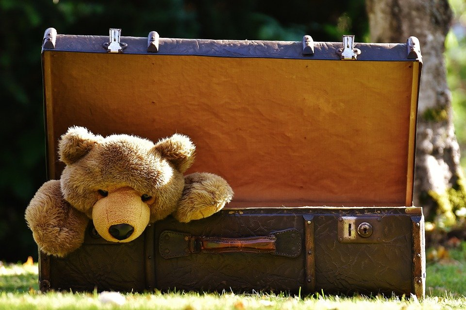 Luggage with bear