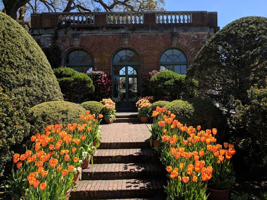The best time to visit Filoli historic house & gardens