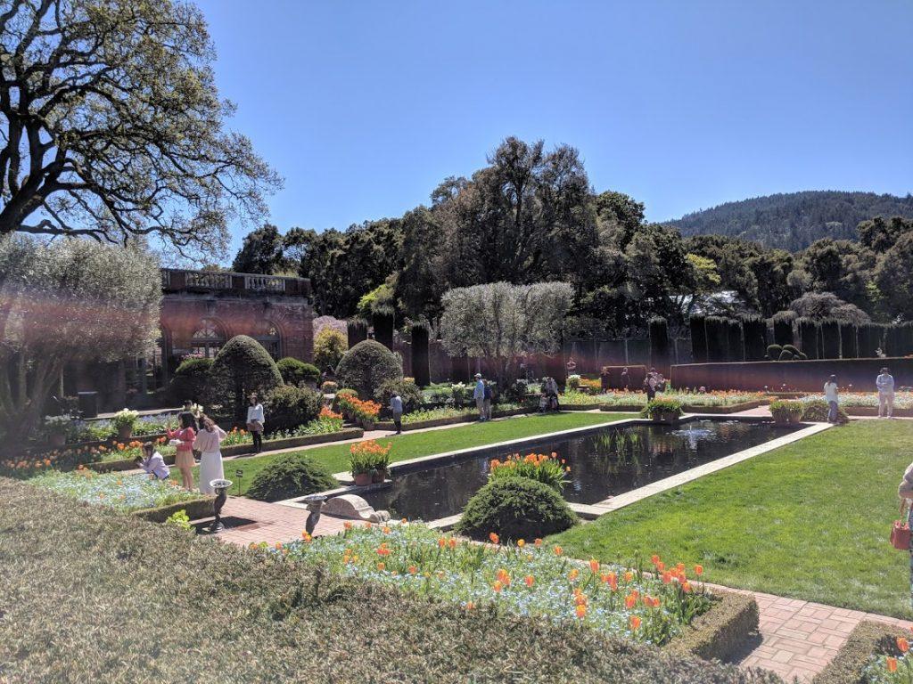 Filoli Gardens pond and formal gardens