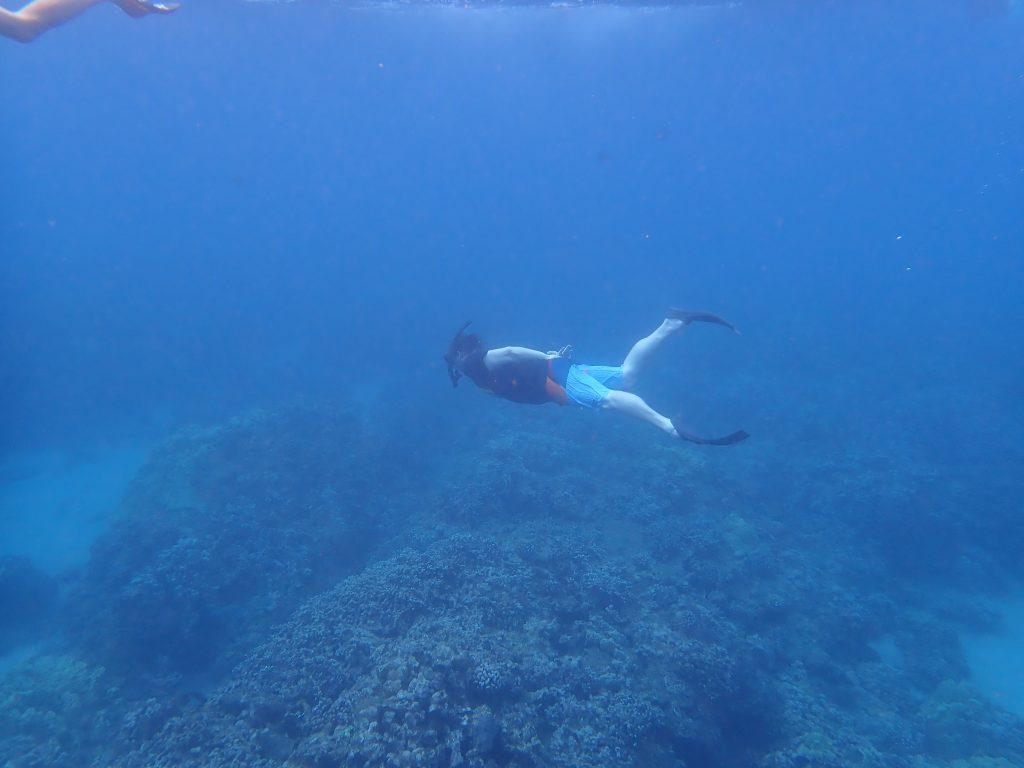 Go snorkeling off Maui