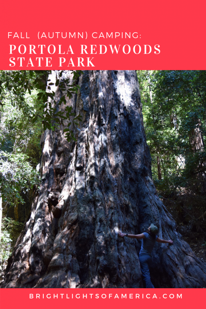 Fall #camping at Portola #Redwoods State Park