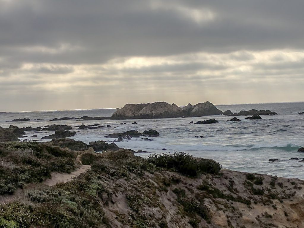 Bird Rock, 17 Mile Drive Monterey California