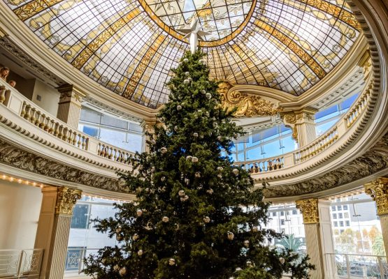 Best San Francisco Christmas activities