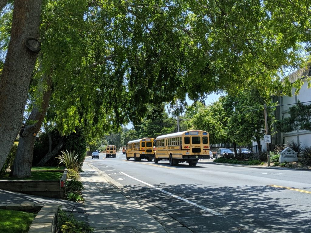 School buses in Belmont, California