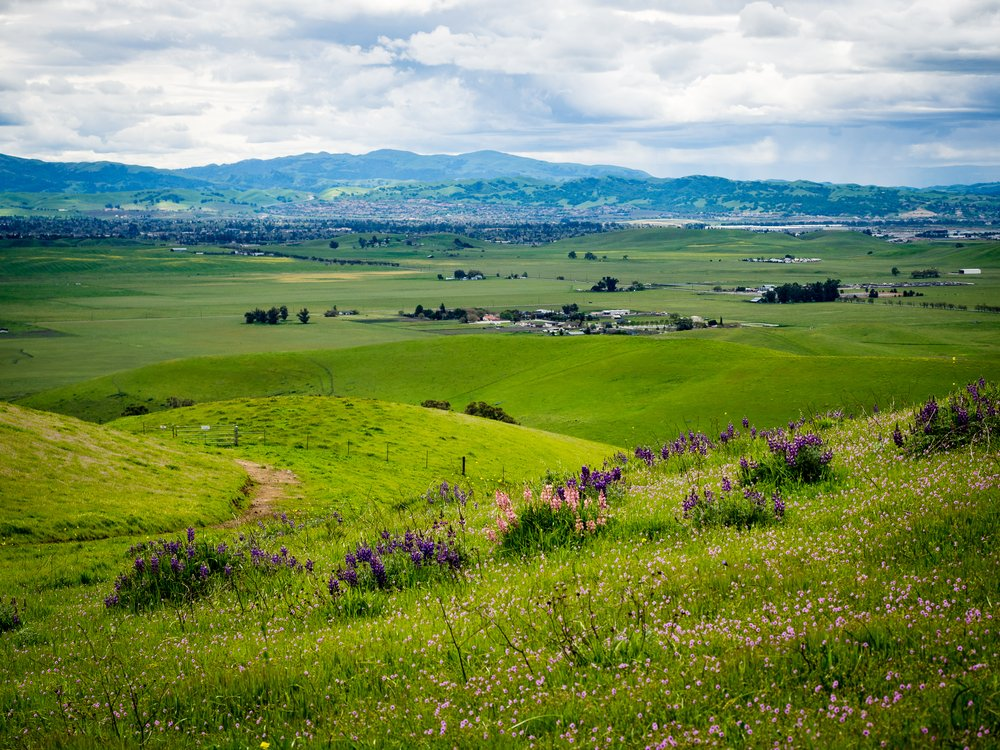 The hills of Livermore