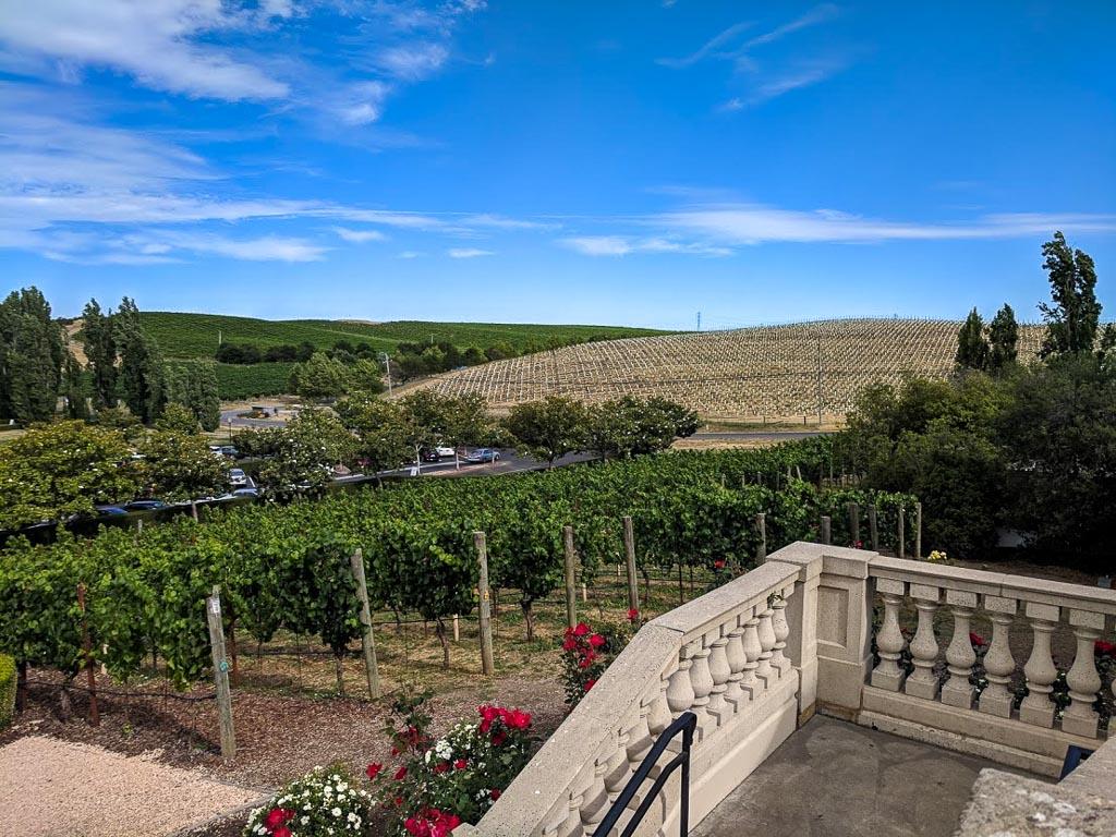 Bay Area Weekend Getaways view of a vineyard