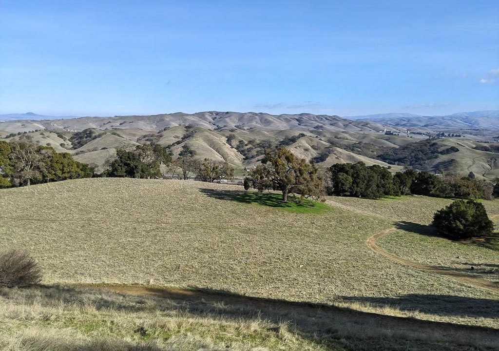 Pleasanton Ridge Regional Park Guide