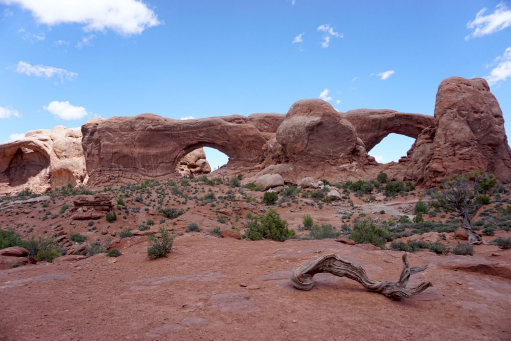 Arches National Park in spring